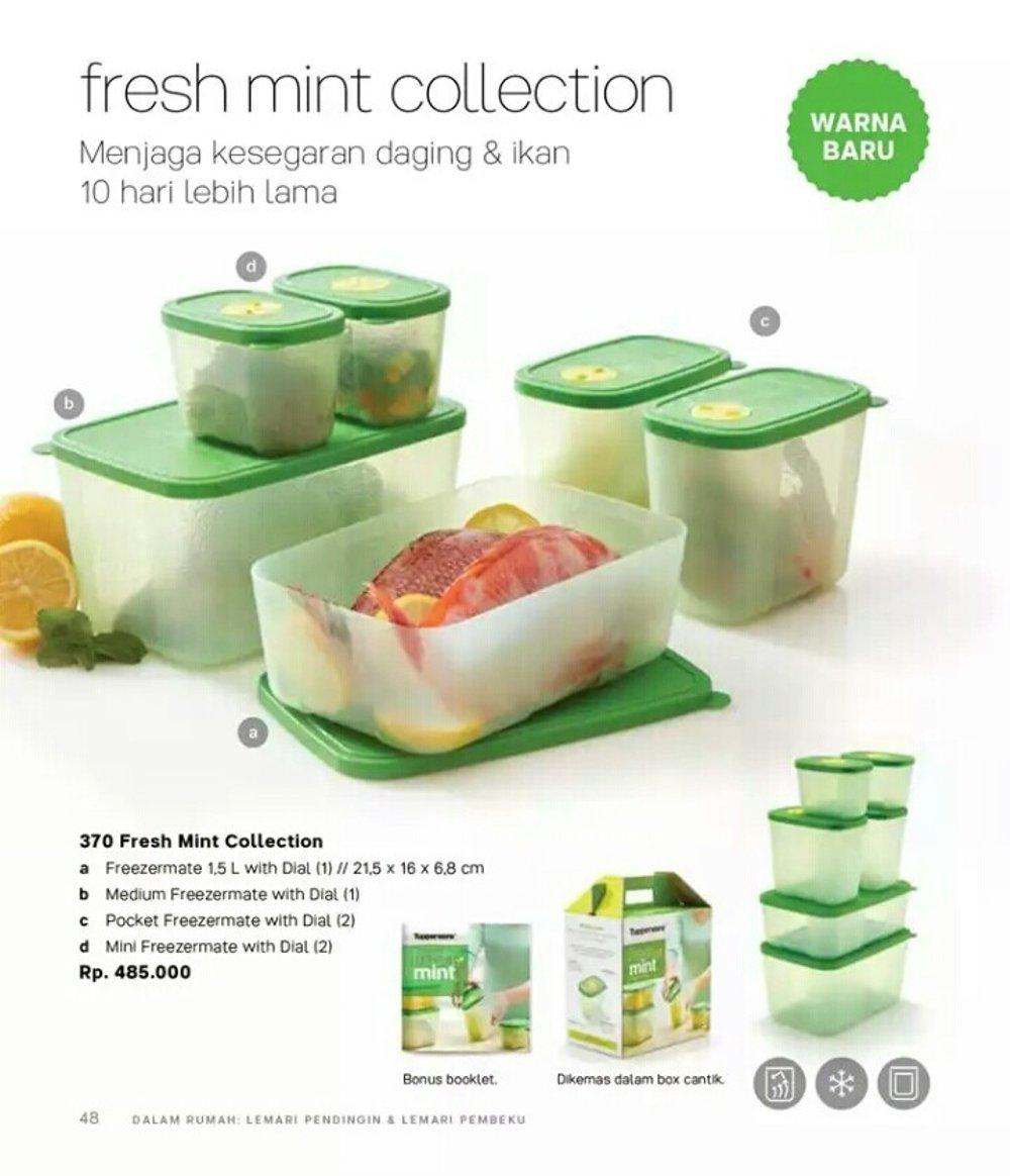 Kehebatan Tupperware Blossom Collection Set Dan Harga Update Sweet Freshmint 6pcs