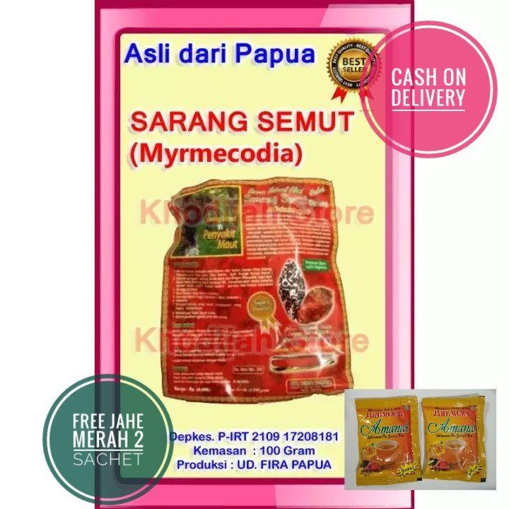 Sarang Semut Papua (Rebus)