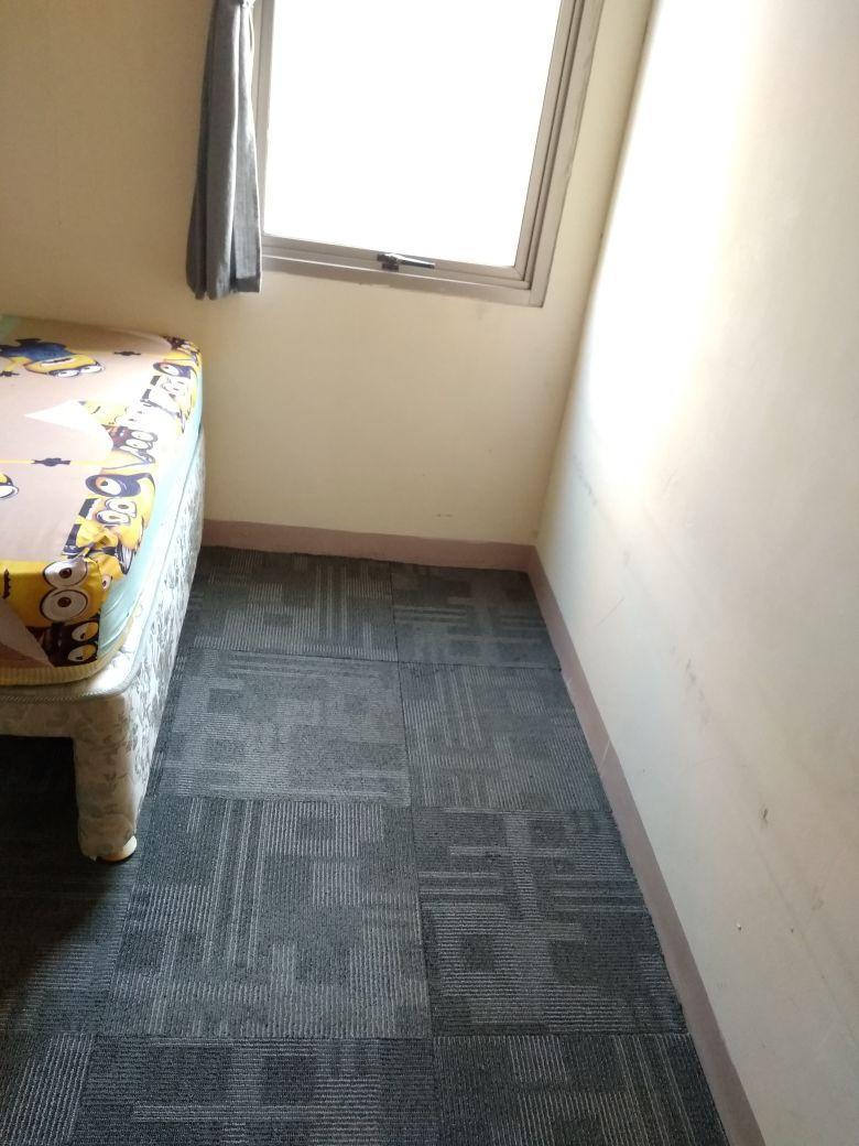 karpet bagus lembut murah mewah