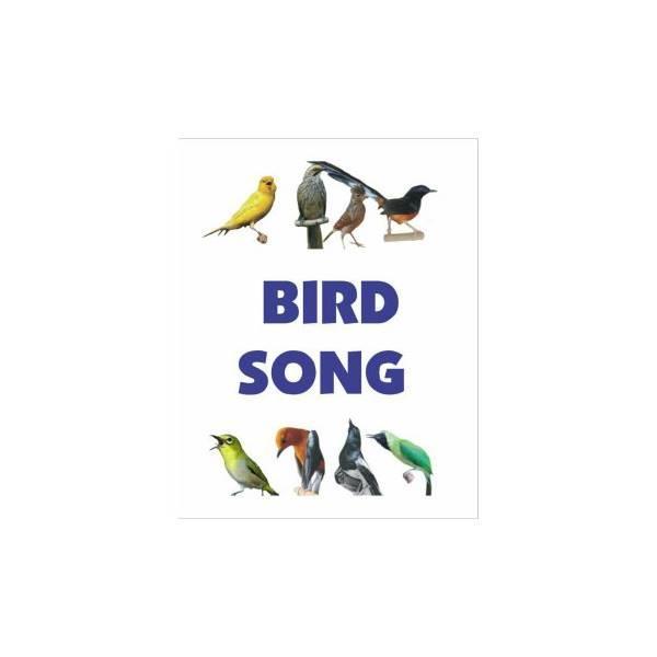 Hot Promo Bird Song (Speaker MP3 Masteran Isian Burung Kicau)