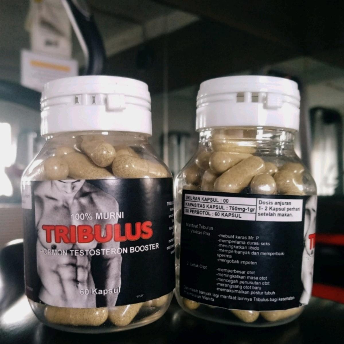 Toko Indonesia Perbandingan Harga Suplemen Makanan Murni 21 07 18 Curah Kapsul Testoterone Booster Tribulus Terrestris Tri Bulus  Grosir Amino Sale
