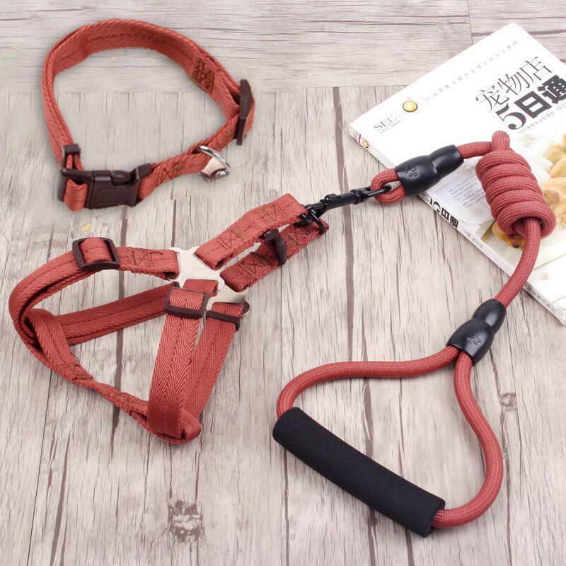 uk S + Leash Merah untuk Kucing, Kelinci, Musang, Puppy .