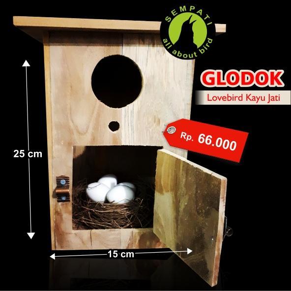 Glodok Glodokan Kaca Kayu Jati Sarang Tempat Ternak Burung Lovebird