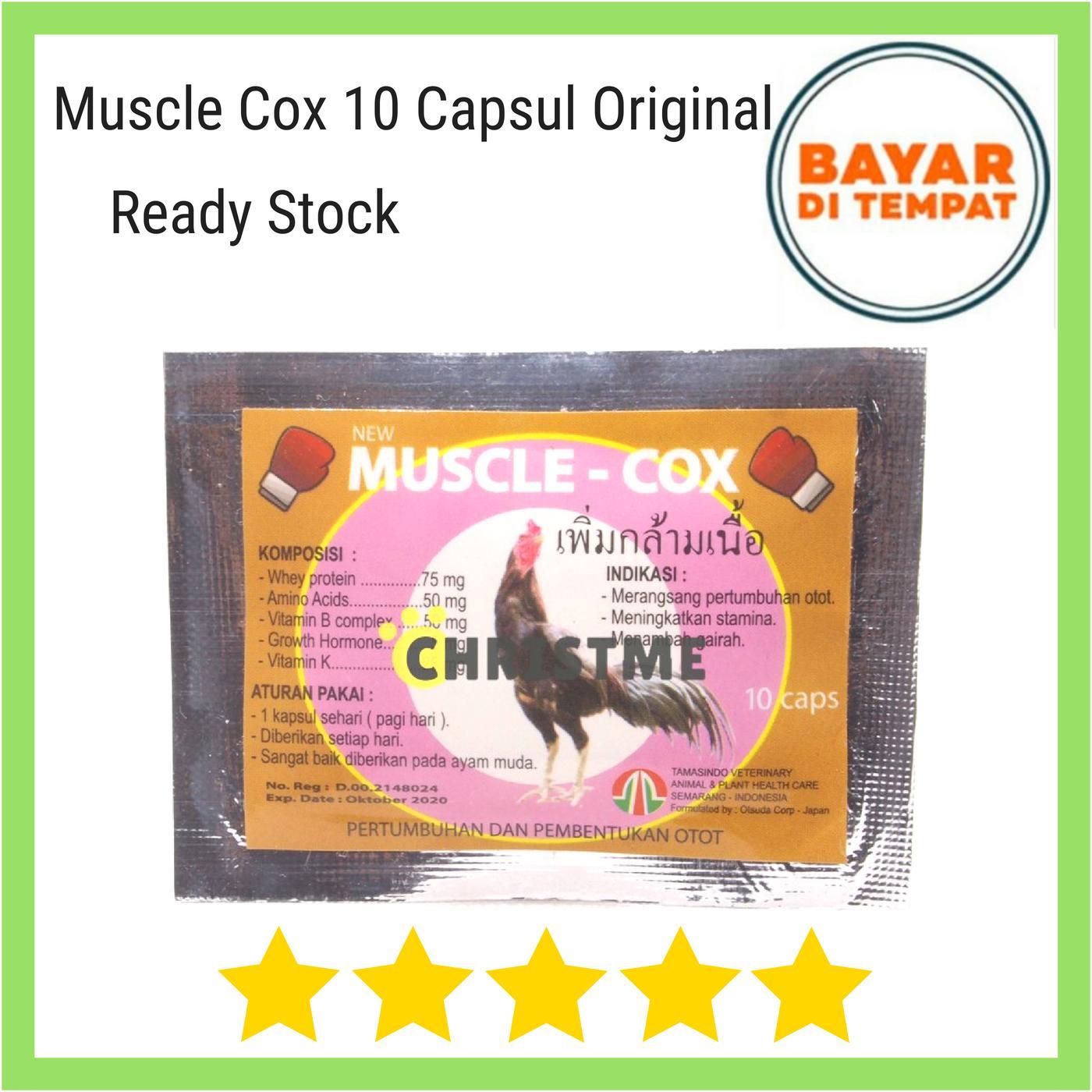 Kelebihan Calcicox Calci Cox 10 Kapsul Menguatkan Tulang Kaki Ayam Kaos Anak Mangkok Mie Kids Muscle Musclecox Obat Vitamin Pertumbuhan Dan Pembentukan Otot Stamina Protein Asam Amino