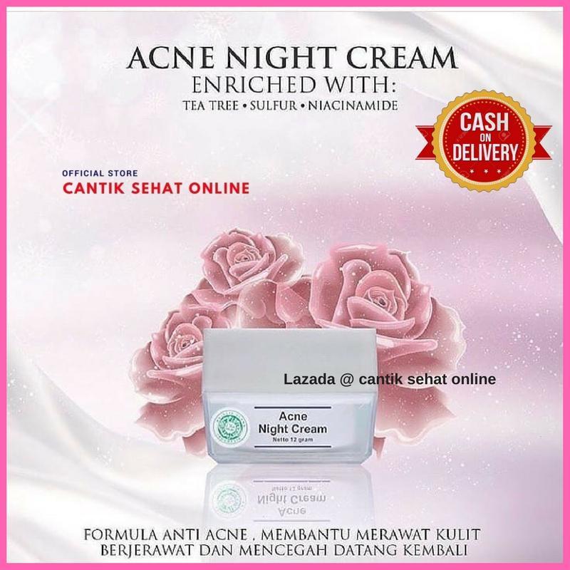 MS Glow Acne Night Cream - Krim Malam untuk Jerawat  @ Cantik Sehat