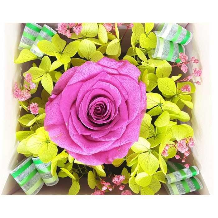 Bloom Box Purple Rose Beauty Preserved Flower Uk 10 x10 cm Beautiful | Dekorasi