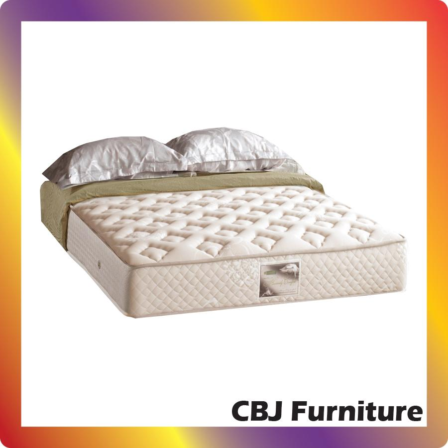 Quantum Springbed Royal Salute Orthopedic Single Pillowtop Size 90 X Matras Quatum Posture Master 25cm Uk 160x200 Hanya Kasur Jadebotabek Only 160 200