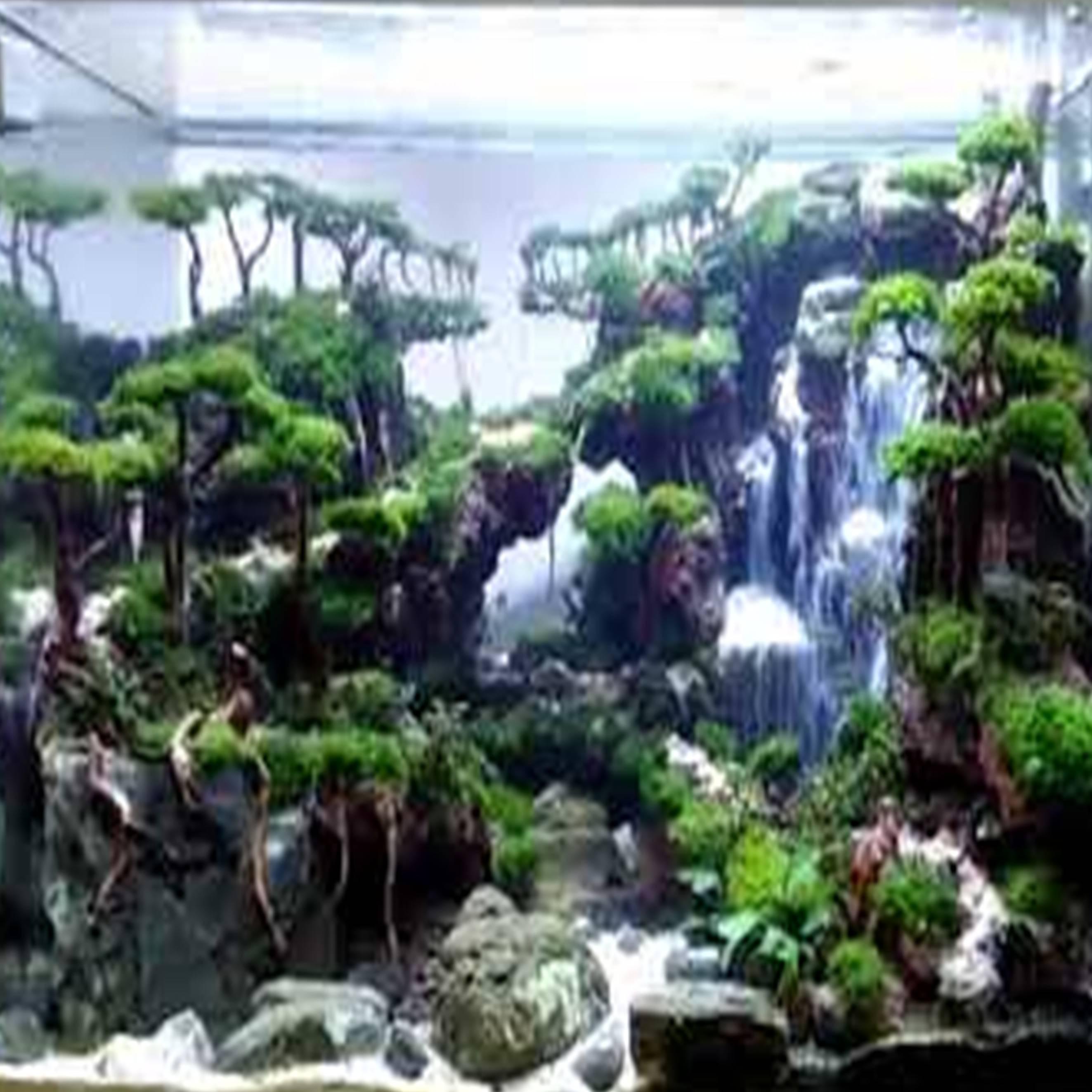 Aquascape Tema Air Terjun Gambar Se