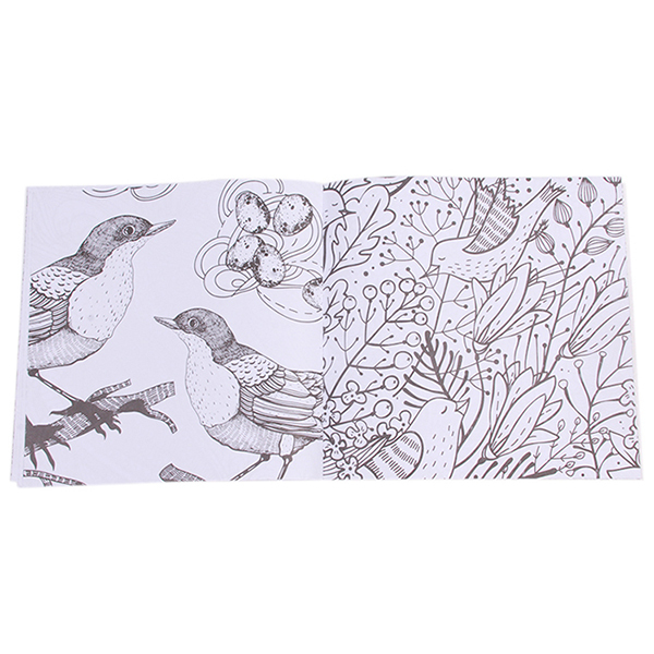 Yingwei Coloring Book Bird Magic Mirror 24 Pages Chinese