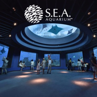 Harga E-Ticket S.E.A Aquarium Singapore [Dewasa]