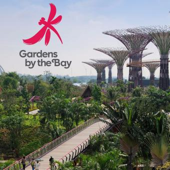 Garden By The Bay E-Ticket (Dewasa)