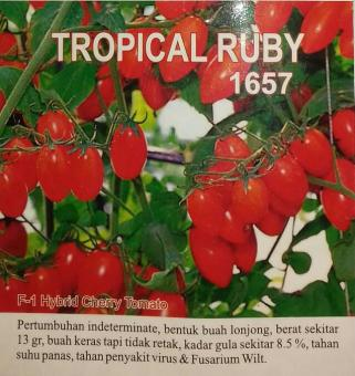 PROMO Repacking- Benih Tomat Cherry Tropical Ruby- Known You Seed MU