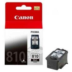 Canon PG- 810 Fine Cartridge