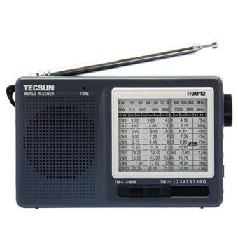 Harga Tinggi sensitivitas TECSUN R-9012 12 Band FM/AM/SW Radio penerima kelabu - International