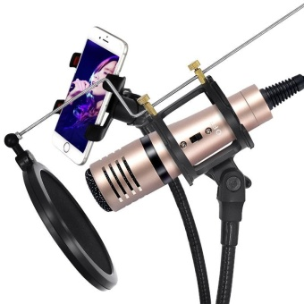 Mobile phone microphone apple android people K song live broadcast live call microphone live - intl