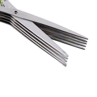 Allwin Stainless Steel 5 gunting pisau potong memotong-motong gunting tajam ramuan alat dapur - 4