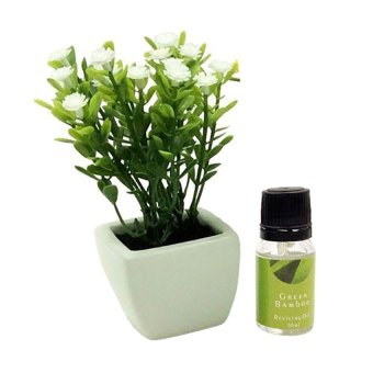 Aromatalks Flower Pot Aromatherapy Diffuser 10ml with Oil Baby's Breath - FL-02C - Green