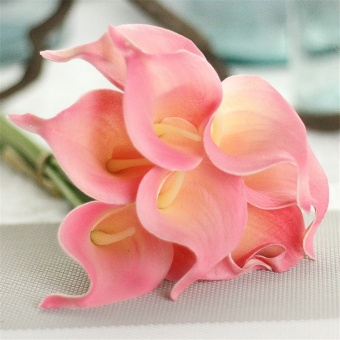 Artificial PU False Calla Lily Flowers Bouquet 1 Flower Head Home Wedding Garden Decor Pink 10Pcs - intl