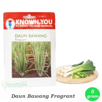 Benih - Bibit Daun Bawang Fragrant (Known-You Seed)