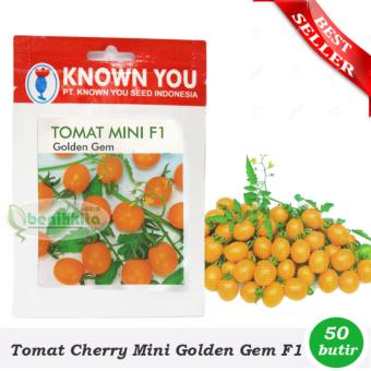 Benih - Bibit Tomat Cherry Mini Golden Gem (Known You Seed)