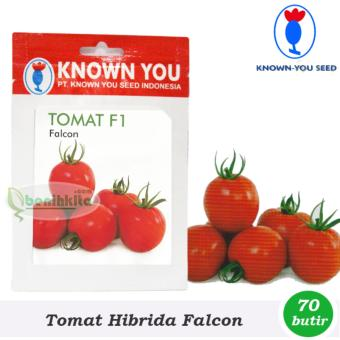 Benih - Bibit Tomat Falcon F1 (Known You Seed)