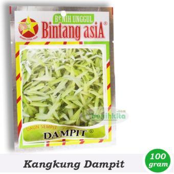 Benih/Bibit Sayuran Kangkung Dampit (Bintang Asia)