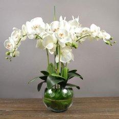 BolehDeals bunga buatan 12 kepala Phalaenopsis rumah dekorasi taman bunga anggrek putih