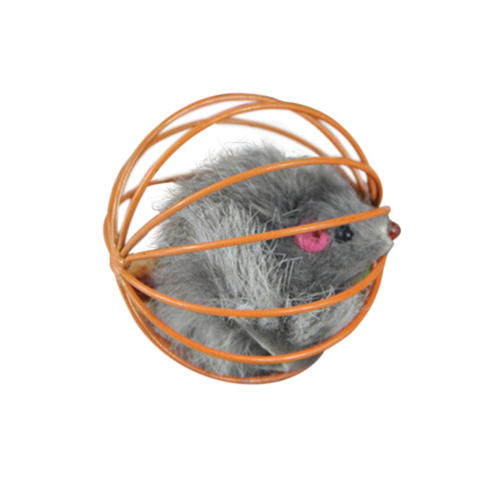 Buytra salah Tikus di Kandang bola (Kelabu/Jeruk)