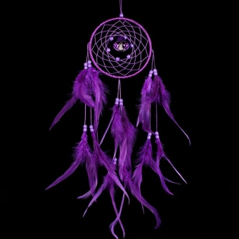 Dream Catcher Wall Hanging Decoration Purple - intl