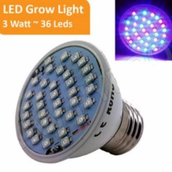 Grow Light 3 Watt - 36 Led
