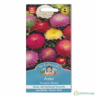 Bibit Bunga Benih Mr Fothergills Aster Pompon Mixed
