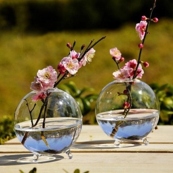 Harga 2 Pcs Clear Ball Glass Vase Bottle Terrarium Hydroponic Container - intl