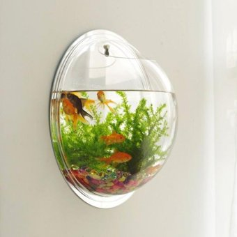 Harga Mini fish tank Home adornment Metope aquarium Hanging the vase tank Floret bottle - diameter 15CM Mirror - intl