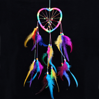 PAlight Wall Hanging Feathers Dream Catcher (Colours)