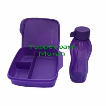 Tupperware eco lolly set Glitter (2 Pcs)