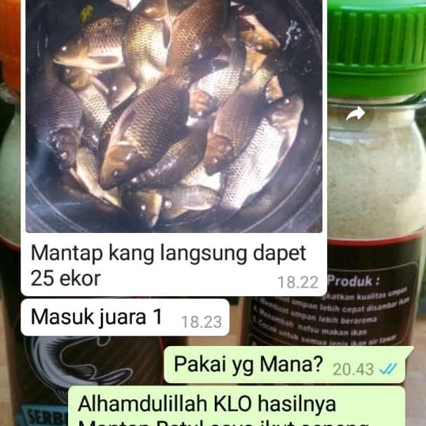 Umpan Ikan Mas Babon Paket Essen Merah Aroma Melati Dan Serbuk Radek Lazada Indonesia
