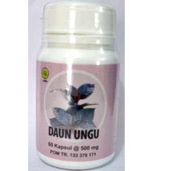 Jual 3 Botol Daun Ungu Herbal Insani untuk Wasir (1 Botol isi 60 kapsul) Online Review