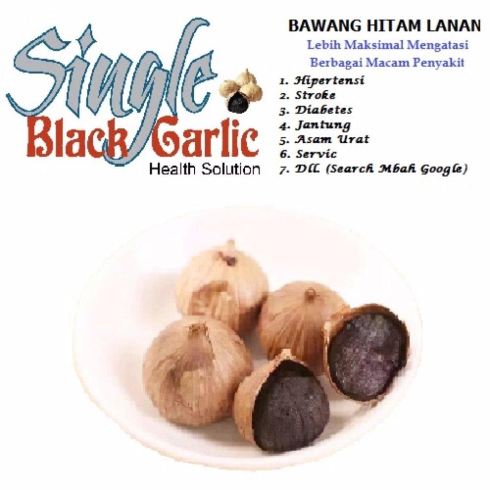 Herbal Garlic Suplemen Bawang Hitam Untuk Kesehatan 500 Gram Putih Tunggal 160 Gr Lanang Black Home Source