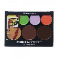 City Color Contour & Correct Pro Cream Palette