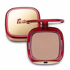 Fanbo Fantastic Professional Two Way Cake - 04 Brown Shade