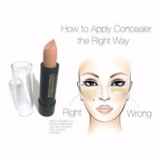 Full Coverage Waterproof Concealer Stick / 1Pcs