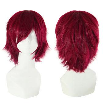 La Vie Men's Anime Wigs Short Straight Synthetic Cosplay Wig(Wine Red)