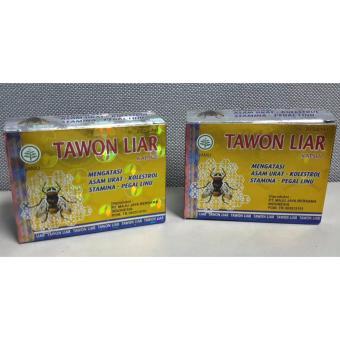 Tawon Liar 2Box Kapsul Obat Asam Urat Kolesterol Pegal Linu Stamina Legal .