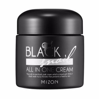 MIZON Premium Black Snail All in One Cream