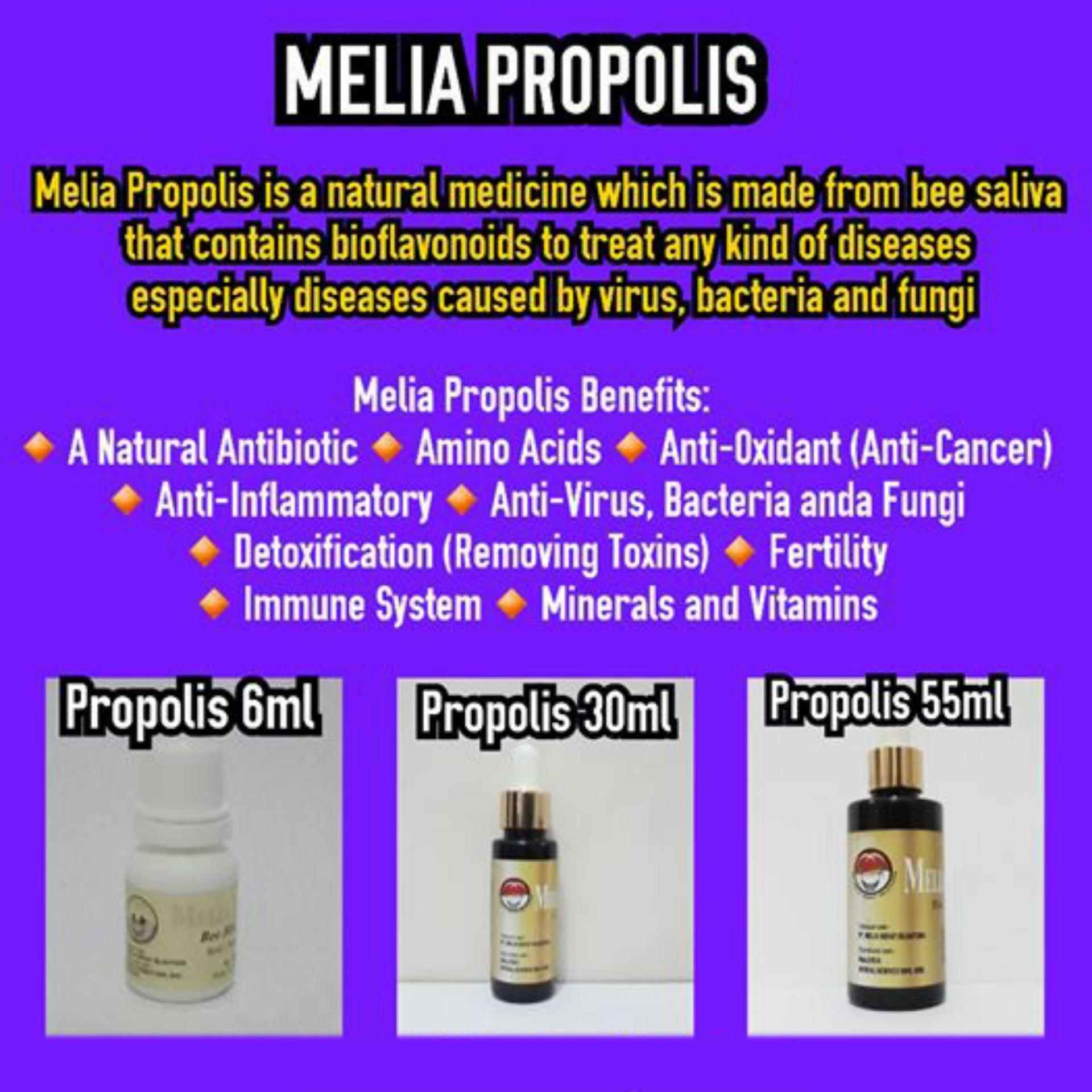 Hot Deals Propolis Melia Mss Original 1 Botol Isi 55ml Me Lia Terlaris