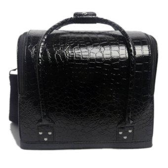 harga Seongnam Soft Carry Makeup Bag Crocodile Pattern / Tas Makeup Black Lazada.co.id