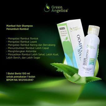 Shampo Untuk Rambut Rontok Yang Paling Bagus Green Angelica Hair Shampo Perawatan Rambut .