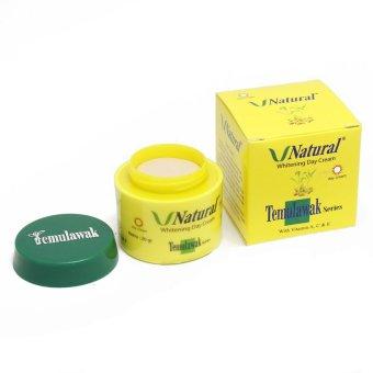 Temulawak Day Cream - Cream Siang V Natural Temulawak