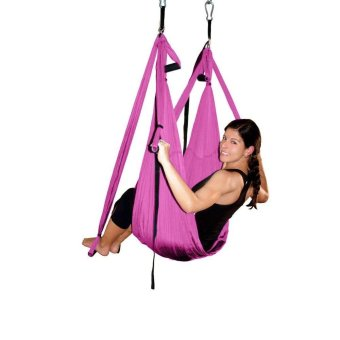 Harga Anti-gravity Yoga Flying Swing Large Load Capacity Yoga Hammock Body Building Tool - Purple - intl