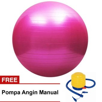 Bola Fitness Yoga Pilates Exercise / Gym Ball Fitness Free Pompa Manual